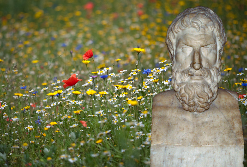 Stumbling upon happiness in the garden of Epicurus? Flowers: Tim Daniels.